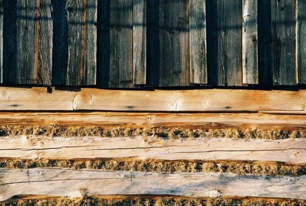 Drwa-historia-z-lasu-drewno